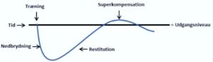 superkompensation-fase